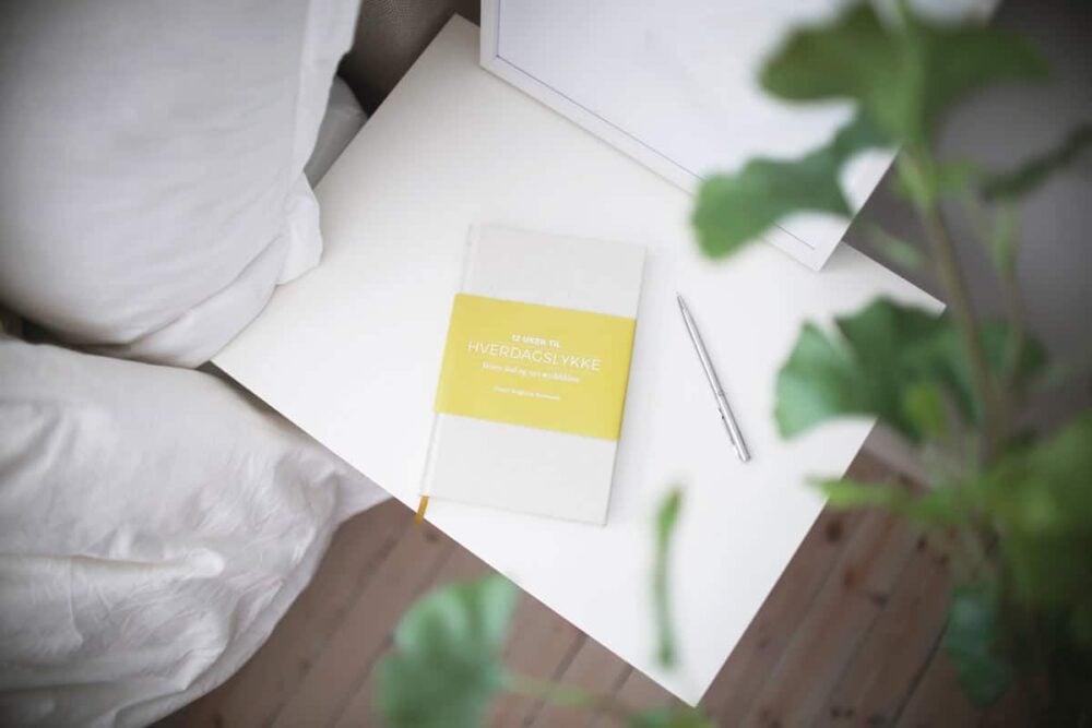 Bilde av boken Hverdagslykke