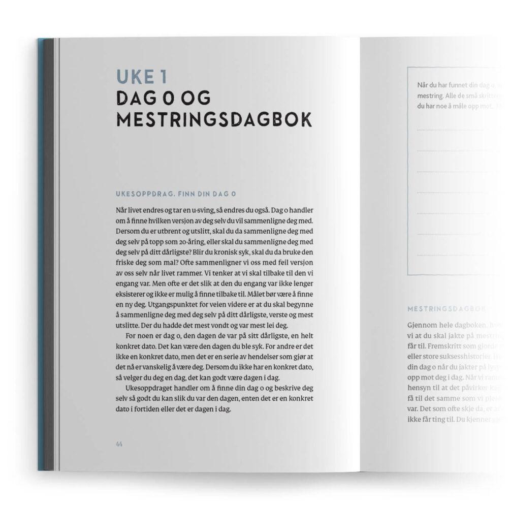 Livssorg – Dag 0 og mestringsdagbok